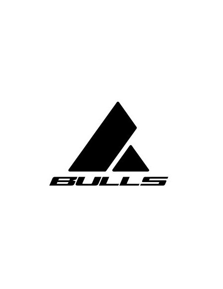 marca-BULLS-de-ebike-mexico-logo