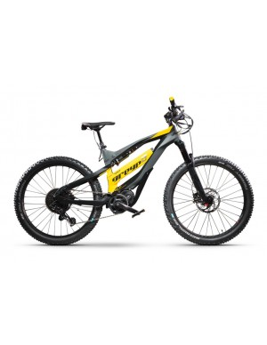 Greyp e-Bike G6.1