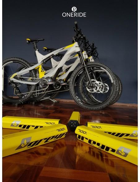 Hecho en Croacia Europa bicicleta electrica marca Greyp modelo G6-3 via OneRide Distribuidor en Polanco CDMX