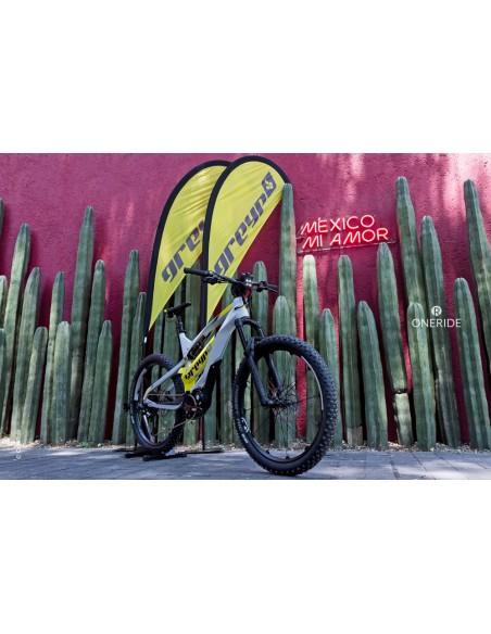 Hecho en Croacia Europa bicicleta electrica marca Greyp modelo G6-3 cactus mexicanos