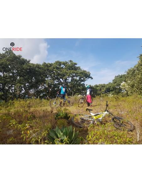 Bici Electrica de montaña Carbon premium Austria Croacia GREYP G 6 3 45 kmh Morelia Michoacan 2021