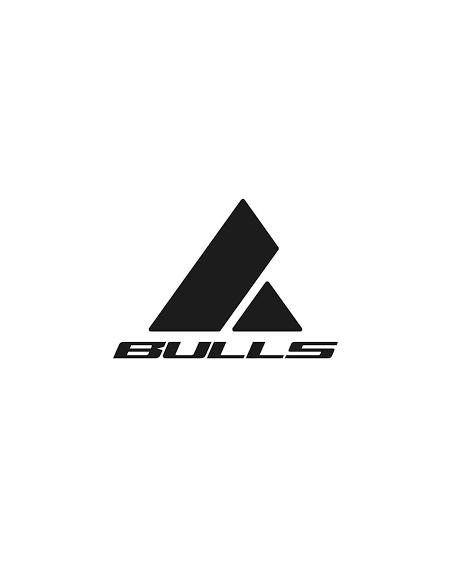 Marca de eBikes BULLS